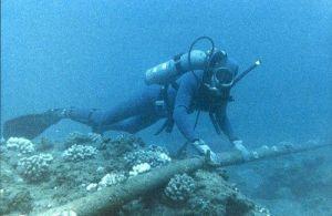 La coupure d'un câble sous-marin a privé l'Algérie d'internet pendant 5 jours (MàJ)